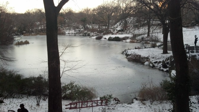 Central Park. This seems like a never ending winter.