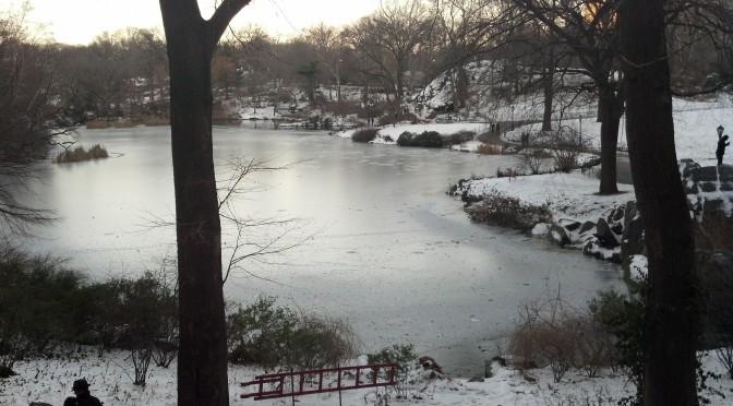 Central Park and Columbus Circle this week